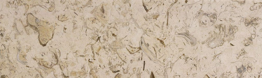 Fossil Travertino Marble Tile