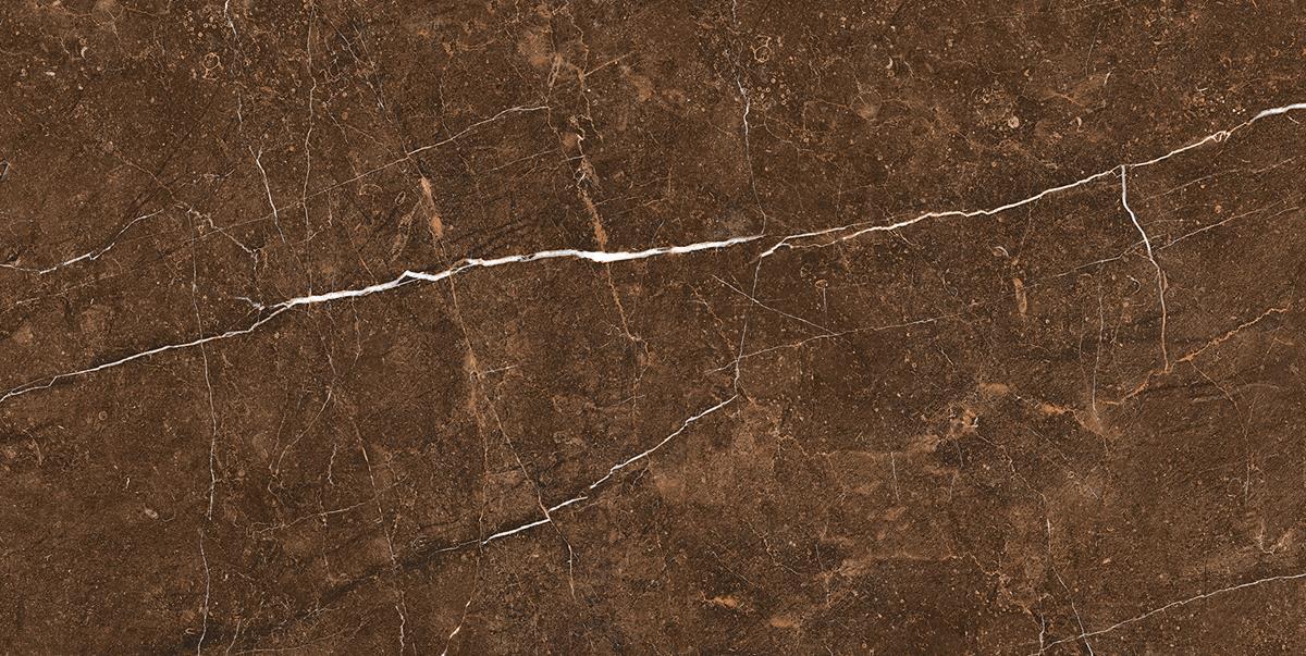 High-Gloss Brown Marble Slab